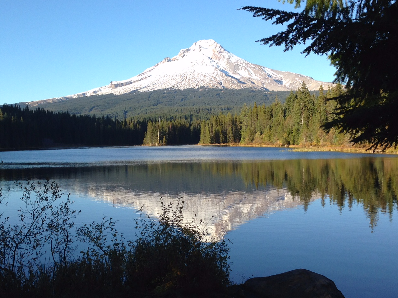 Top 10 Reasons You MUST Add Oregon to Your Bucket List