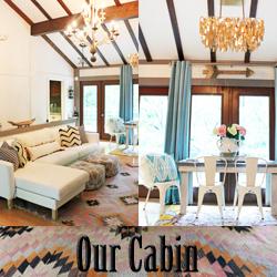 Cabin Link_edited-1