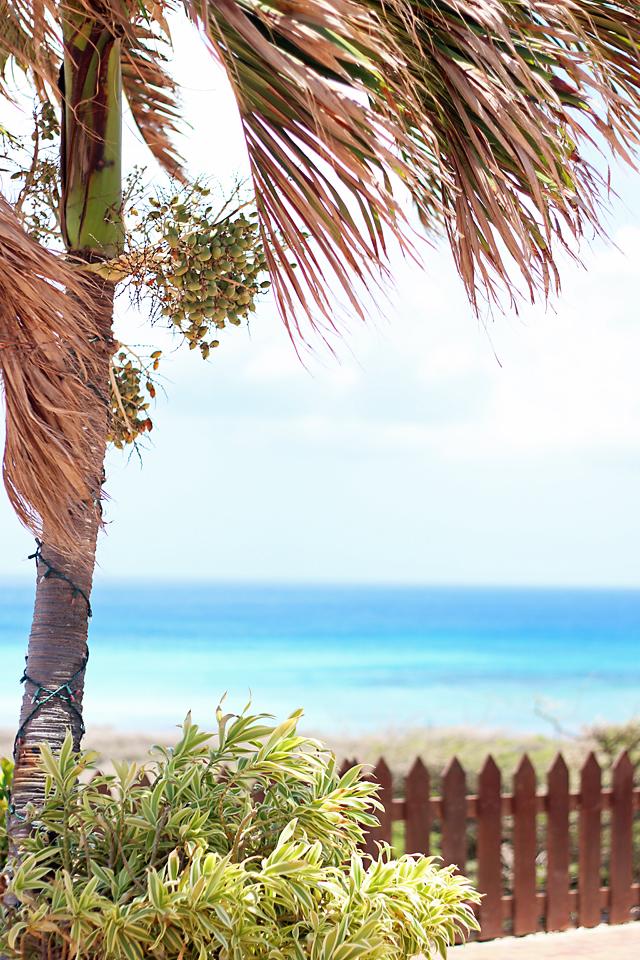 The Ritz Carlton Aruba Vacation 28