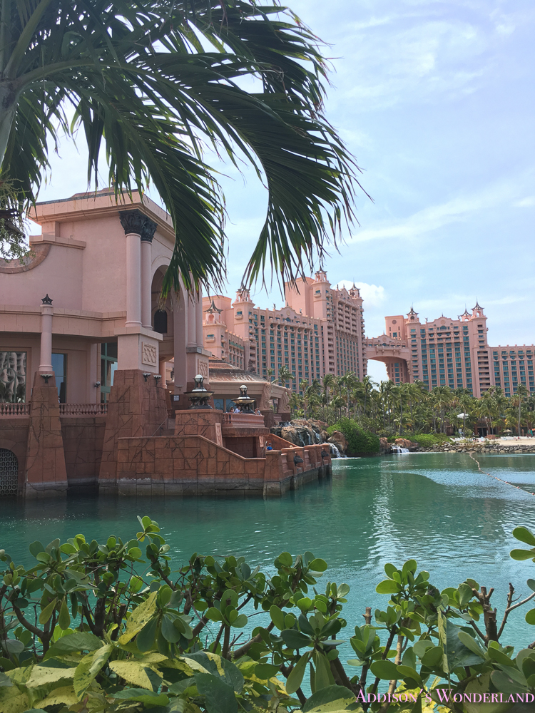 The Atlantis Resort- My Honest Review