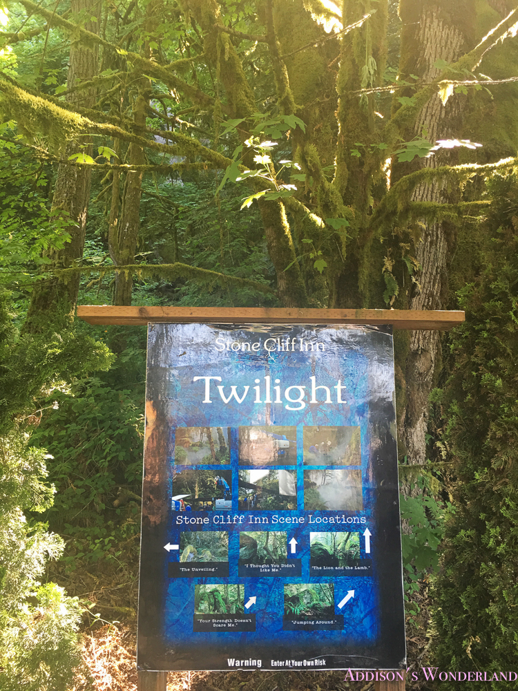 Oregon Trip Summer Vacation Portland Mountains Mount Hood Twilight Family 44 Of 55