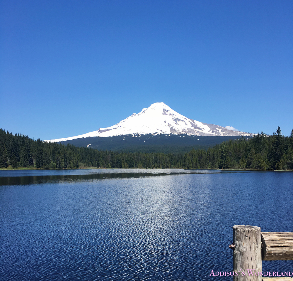 Our Must-See Portland, Oregon Weekend!