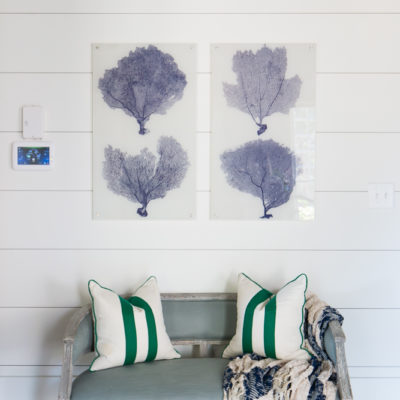 Our New Blue Coral Prints…