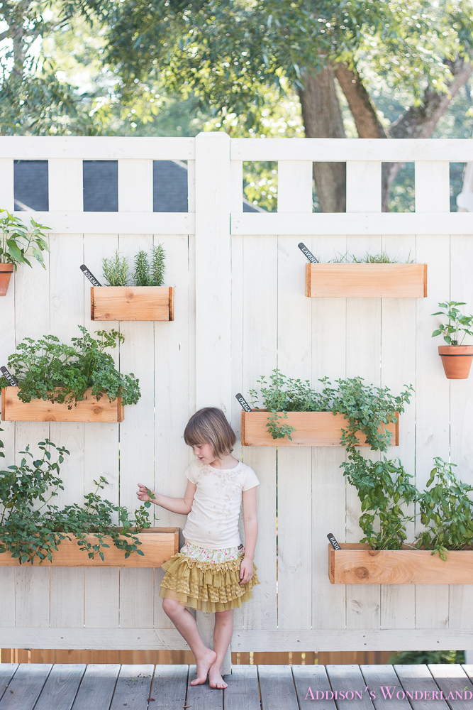 Our Under $40 DIY Outdoor Herb Wall!