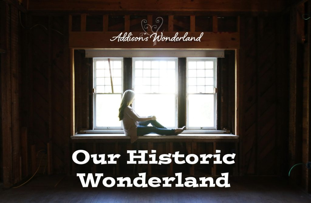 our-historic-wonderland