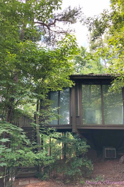"Step Inside Our Newest ""Treehouse"" Wonderland…"